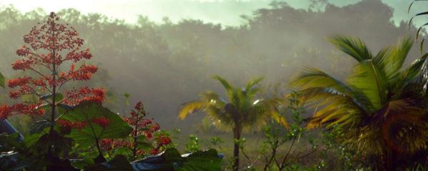 La Guyane est à visiter